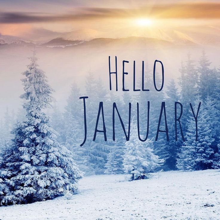 941e6a987bab6cf2b716ba71b398dbcb--hello-pictures-hello-january