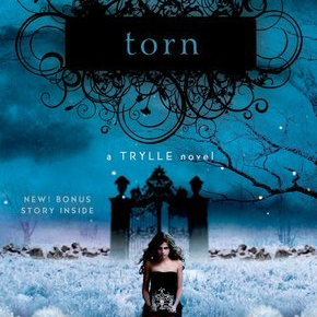 Book Review: Torn