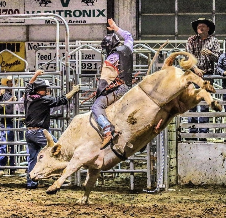 High School Rodeo to ProRodeo